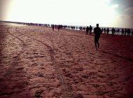 Egmond Halve Marathon Facebook en Twitter service, meld je nu aan