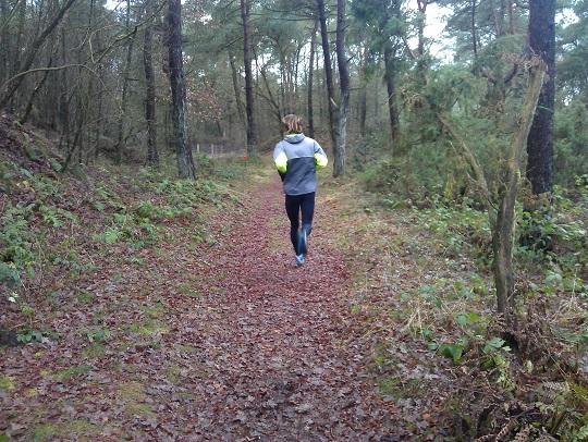 alleen hardlopen in het bos
