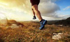 Nederlands Kampioenschap Trailrunning bij Koning van Spanje Trail