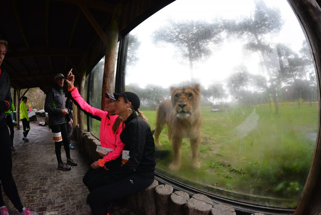 Safari Run Warandeloop