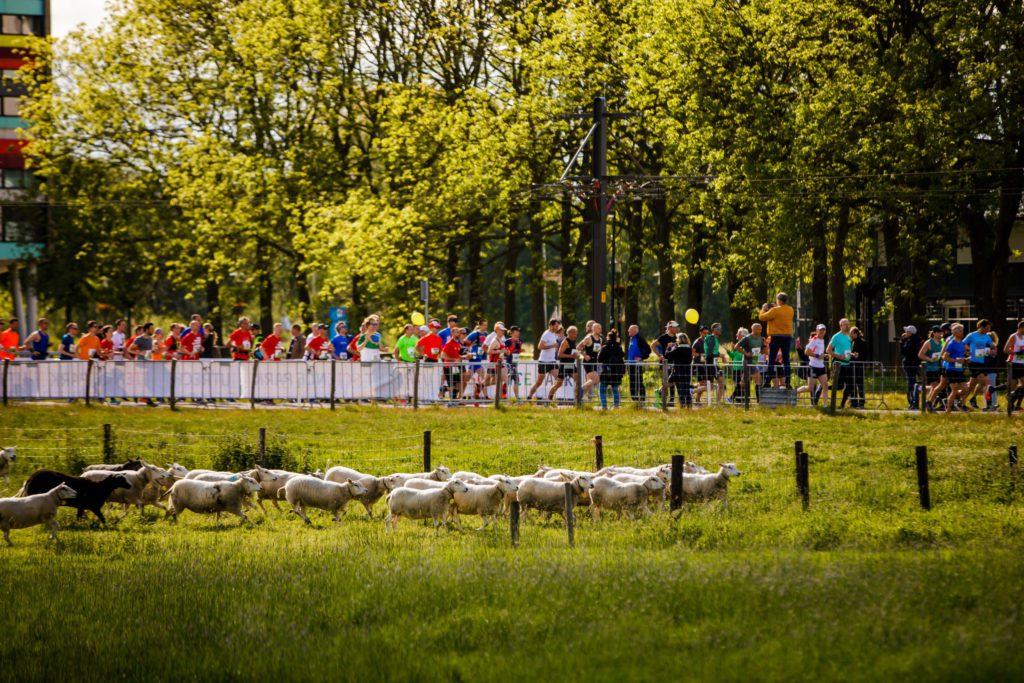 Utrecht Marathon start