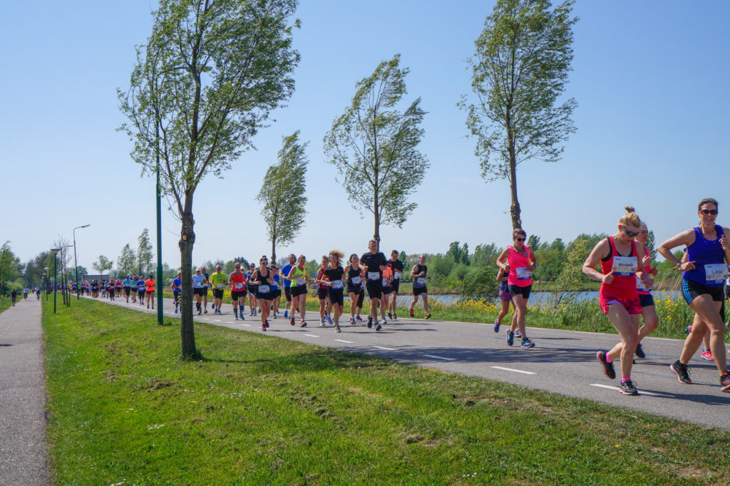 Festival Run Rotterdam