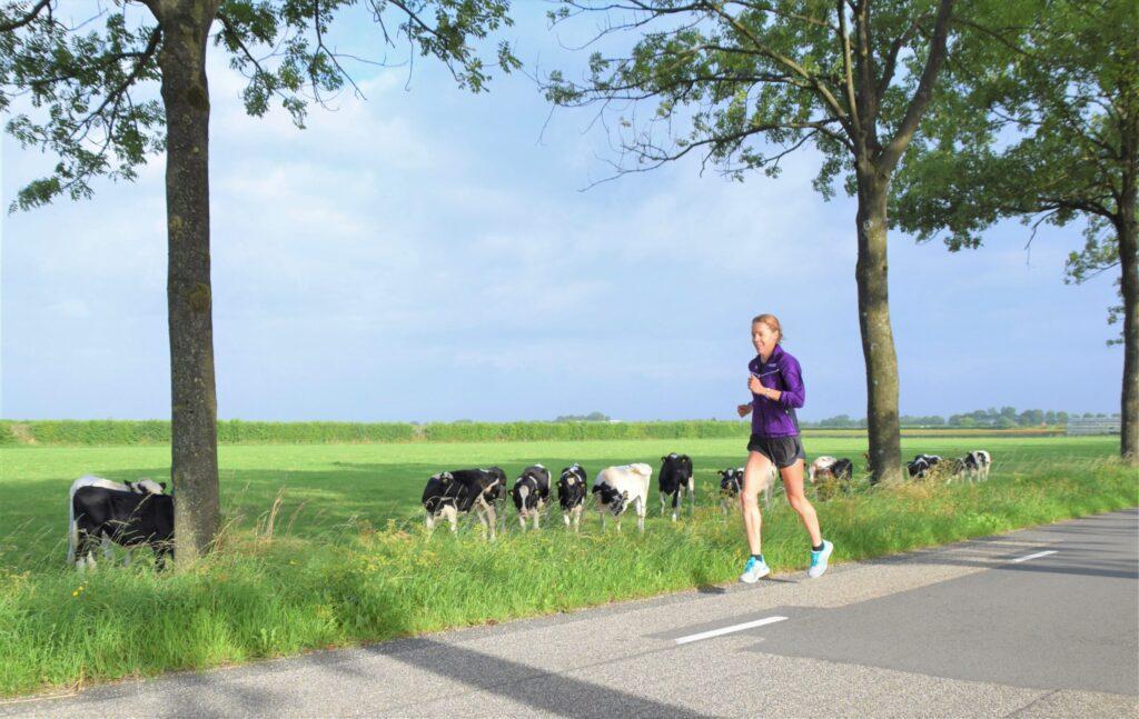 Bo Ummels loopt parcours NK 10 km